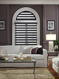 All Window Artisan Allure Transitional Shades