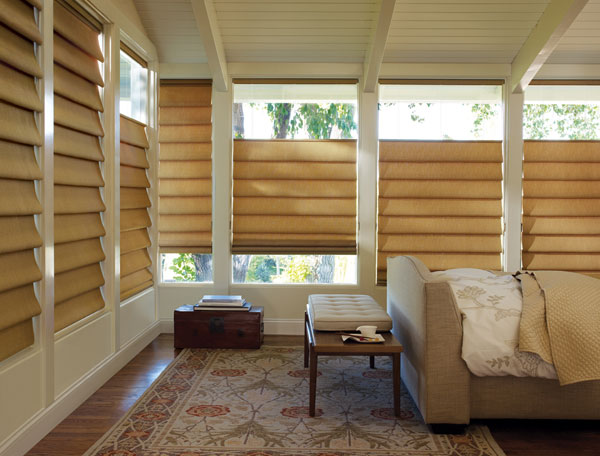 Roman Shades All Window Artisan