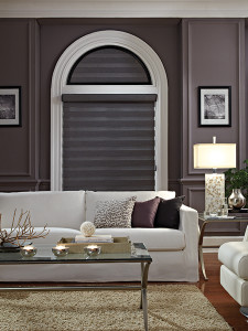 Allure Transitional Shades All Window Artisan